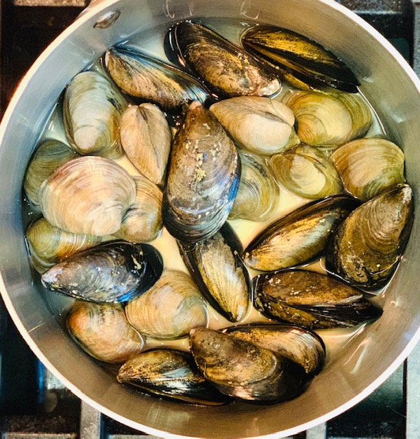 Mussels and clams cooking