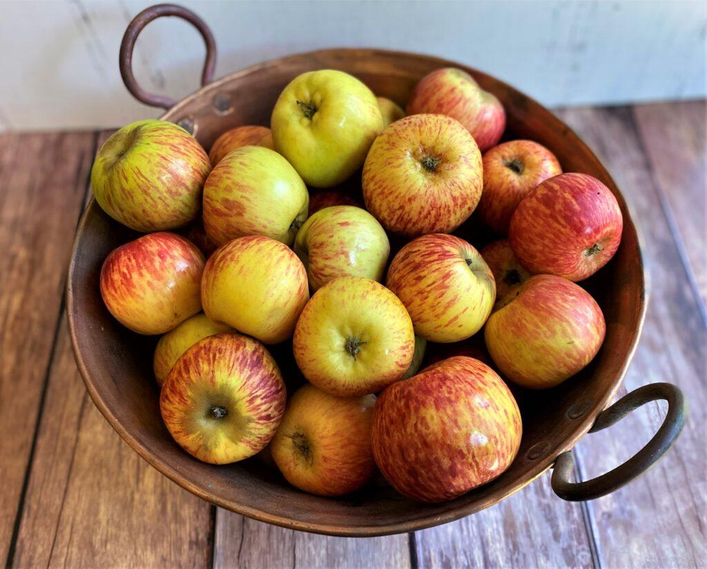 6 pounds of Gravenstein Apples